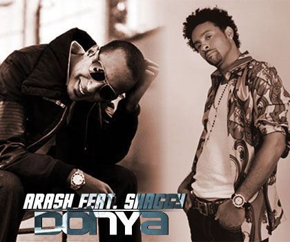 Shaggy feat arash-donya